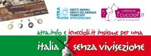 I Csre Italia e Collezione i Cuccioli
