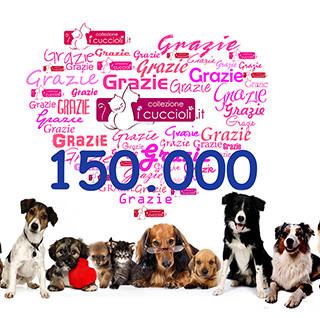 Collezione i Cuccioli, 150000 fan facebook