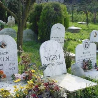 Cimitero pelosi